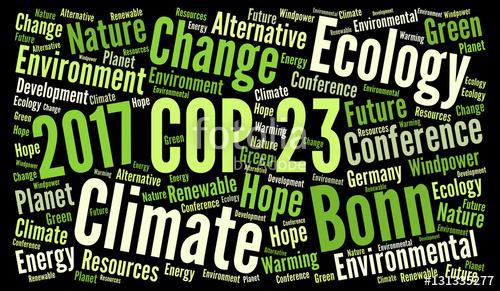 Aktionen gegen COP 23 unterstützen! Kampf gegen Klimawandel braucht revolutionäre Strategie!